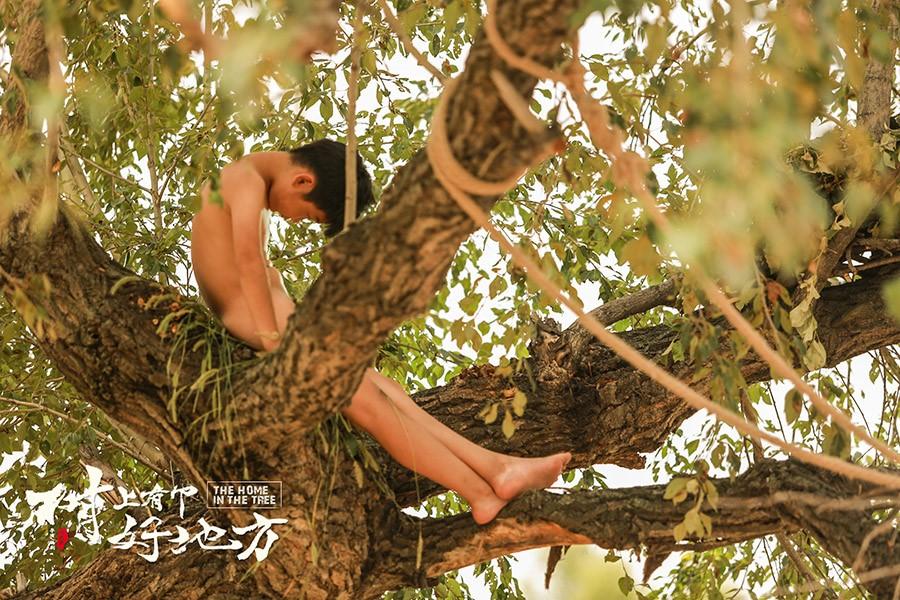 电影《树上有个好地方》定档9月6日 (3).jpg