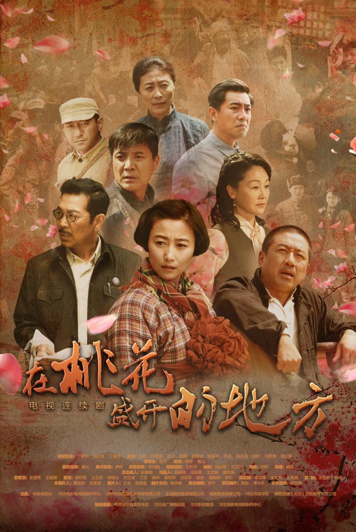 2.电视剧《在桃花盛开的地方》海报.jpg