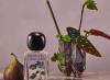 野兽派无花果香菜香水及家用香氛正式登场