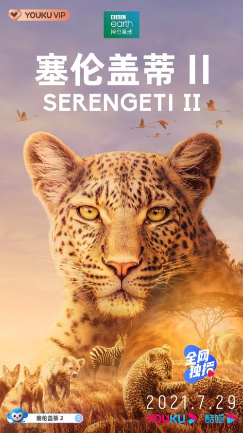 BBC神作《塞伦盖蒂 II》惊喜回归 7月29日登陆优酷