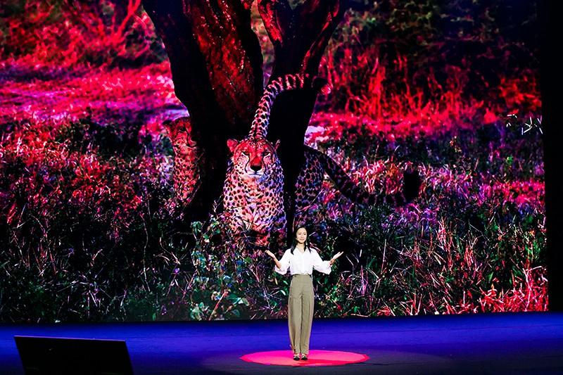 江一燕TED演讲《共同的家园》讲述目睹动物杀戮经历3.jpg